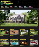 property detailers web design